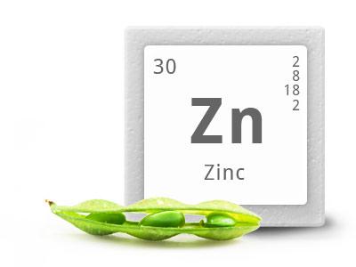 beneficios do zinco
